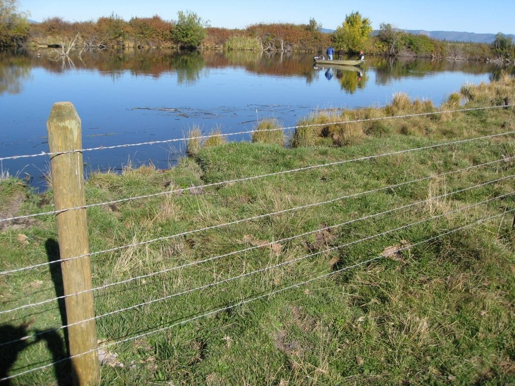 Cattle Exclusion Fencing - Fall River
